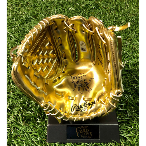 Photo of Rays Baseball Foundation: Kevin Kiermaier Autographed Mini Gold Glove