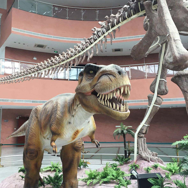 Click to view Discover China's Town of Dinosaurs.