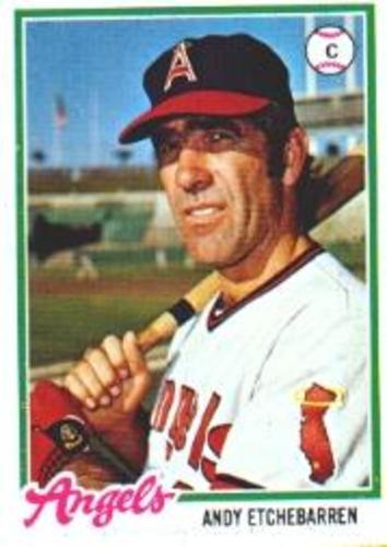 Photo of 1978 Topps #313 Andy Etchebarren