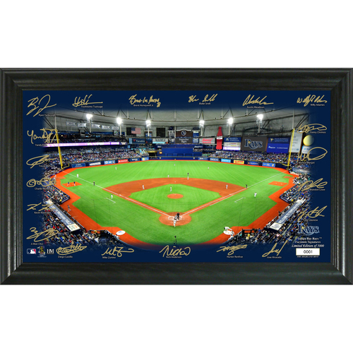 Photo of Tampa Bay Rays 2020 Signature Field Limited Edition Frame