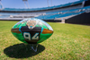 Jaguars Customized Artist Football Autographed by Collin Johnson - Jaguars Mascot depicted in artwork