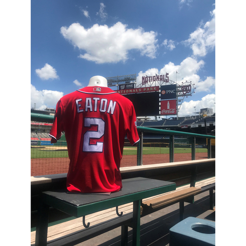 brand new 1cfb1 be87f Nationals Auctions | Adam Eaton Game-Used Jersey