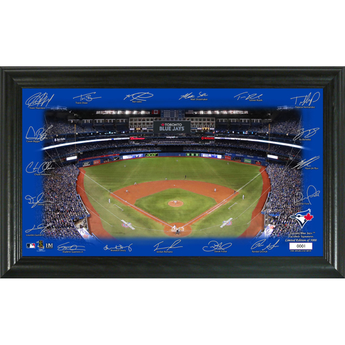 Photo of Toronto Blue Jays 2020 Signature Field Limited Edition Frame