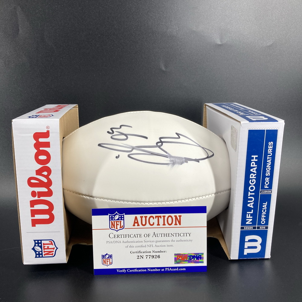 Patriots - Lawrence Guy Signed Panel Ball (Slight Smudge)