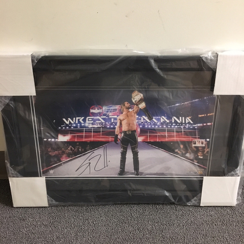 Photo of Seth Rollins SIGNED WrestleMania 31 Panoramic Frame