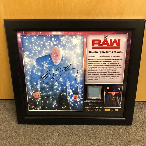 Photo of Goldberg SIGNED RAW Signature Series Ring Canvas Plaque (#4 of 10)
