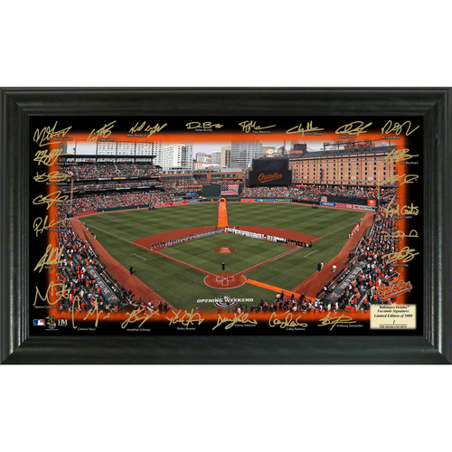 Photo of Baltimore Orioles 2018 Signature Field
