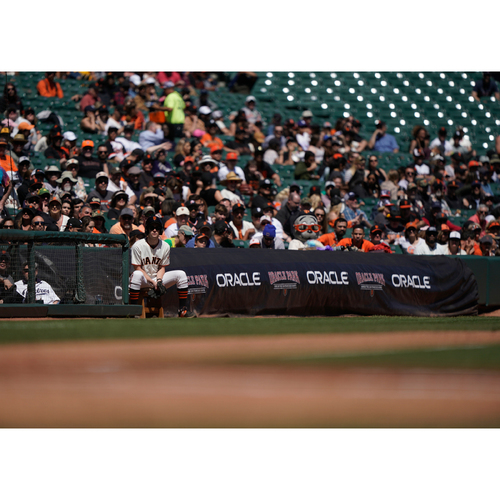 Photo of Giants Wives Auction:  Balldude or Balldudette Experience