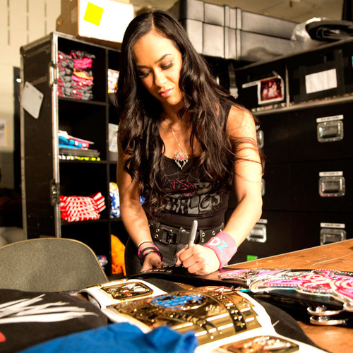 AJ Lee SIGNED WWE Divas Championship Replica Belt