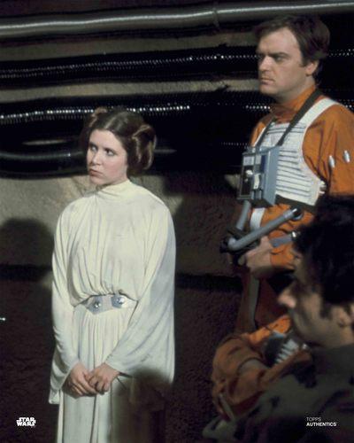 Princess Leia Organa and Gold Leader