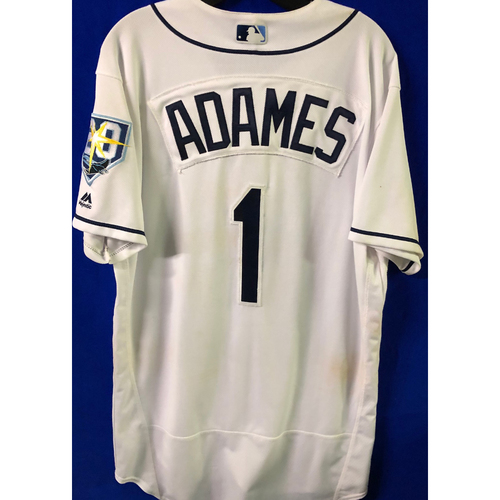 20th Anniversary Game Used Jersey: Willy Adames (5 Games) - First MLB Season