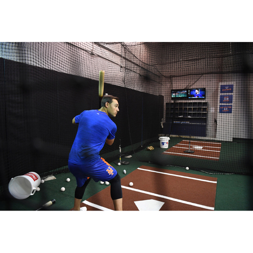 Photo of Amazin' Auction: Exclusive viewing of Mets Player & Coach hitting session