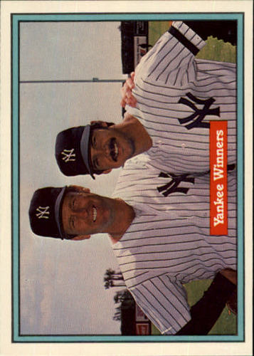 Photo of 1982 Donruss #558 Ron Guidry/Tommy John