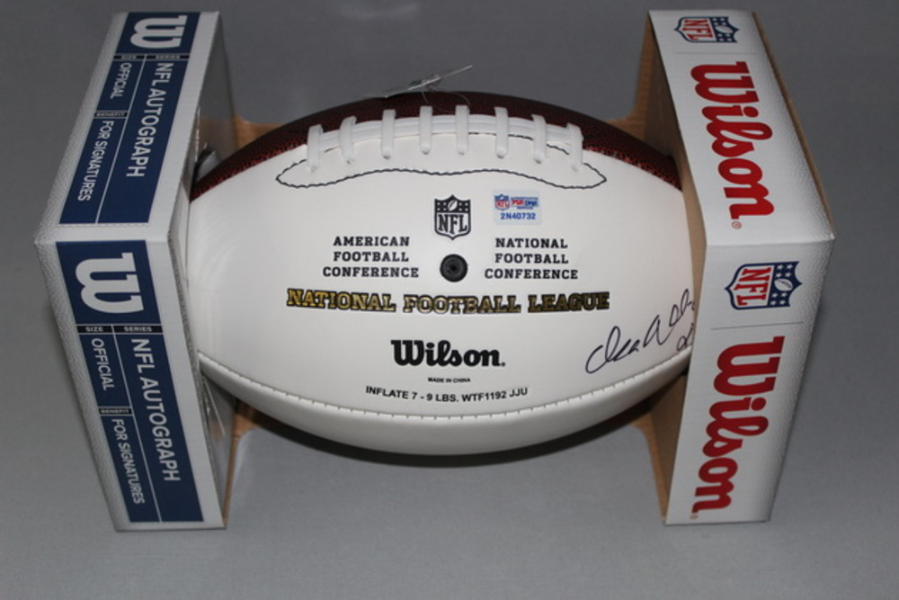 Dolphins - Isa Abdul-Quddus signed panel ball
