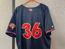 Photo of Anderson Amarista Game-Used & Autographed Growers Jersey