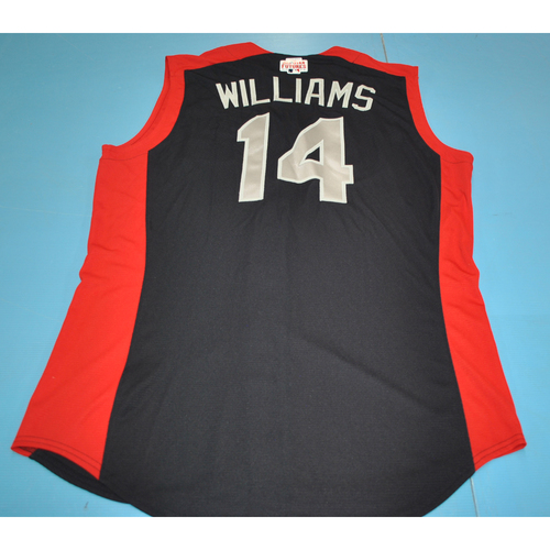 Photo of 2019 Futures Game - Devin Williams Batting Practice Worn Jersey