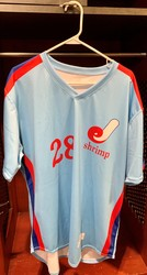 Photo of Jacksonville Expos Fauxback Jersey #28 Size 48