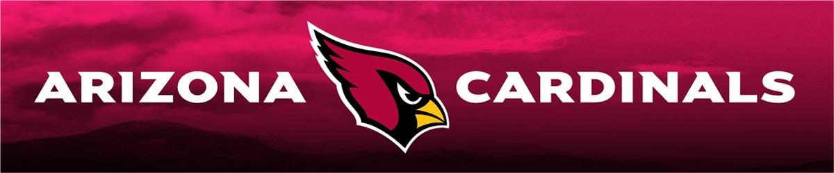 nfl auction arizona cardinals Dallas Cowboys Logo Wallpaper Dallas Cowboys Helmet Logo