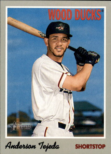Photo of 2019 Topps Heritage Minors #51 Anderson Tejeda