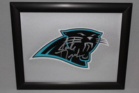 PANTHERS - JAKE DELHOMME SIGNED PANTHERS DECAL WITHIN 8.5 X 11 PICTURE FRAME
