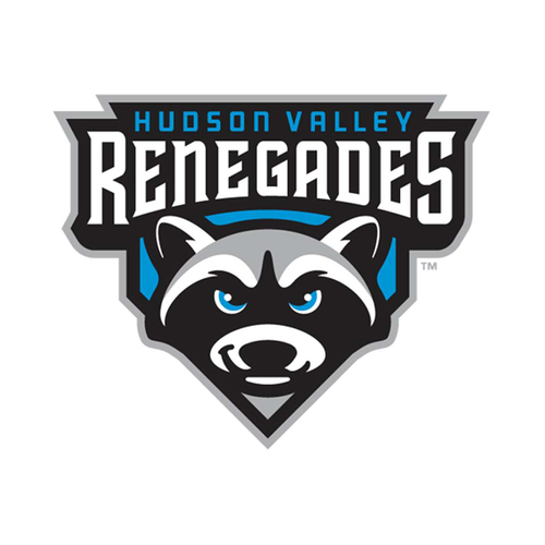 Photo of UMPS CARE AUCTION: Hudson Valley Renegades (Rays SS) Skybox for 15