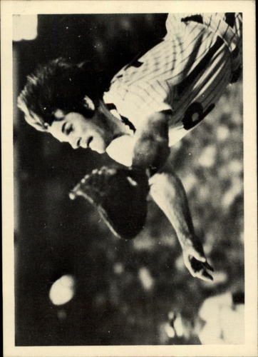 Photo of 1985 Topps Rose #113 Pete Rose/Diving for pop up