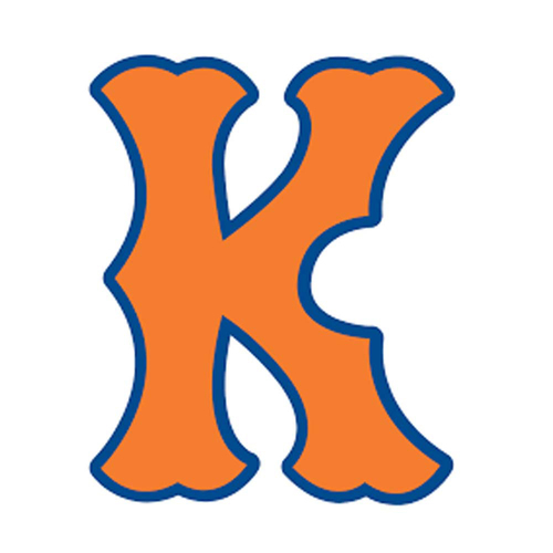 Photo of UMPS CARE AUCTION: Kingsport Mets (Rookie) First Pitch plus Tickets, Programs, and Food Vouchers for 4