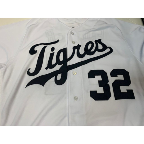 Photo of Team-Issued Fiesta Tigres Jersey: Michael Fulmer