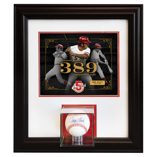Johnny Bench Home Run Collection - Bench Breaks Yogi Berra's Career Record for Home Runs by a Catcher: July 15, 1980