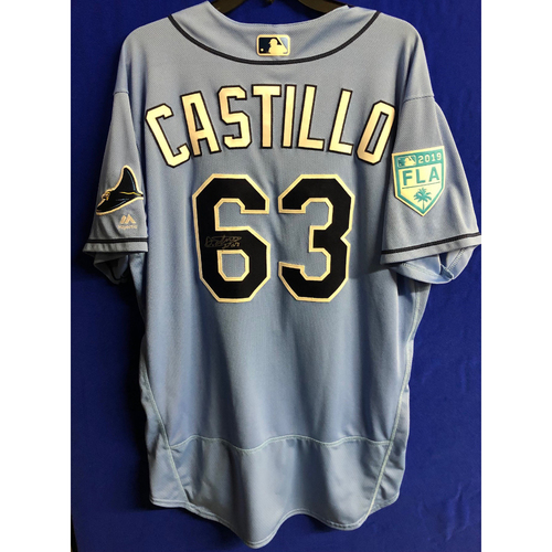 Photo of Team Issued Autographed Spring Training Jersey: Diego Castillo - 2019