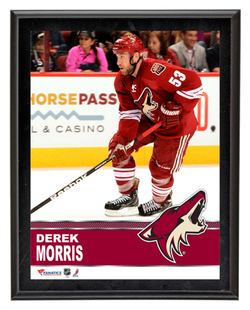 Derek Morris Arizona Coyotes Sublimated 10