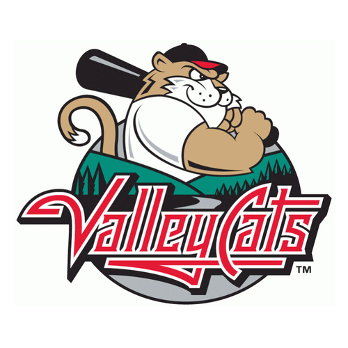 Photo of UMPS CARE AUCTION: Tri-City ValleyCats (Astros SS) Picnic Pavilion Tickets for 10 plus Baseball Caps