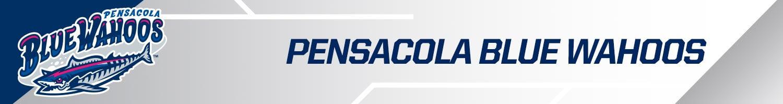 Pensacola Blue Wahoos team banner
