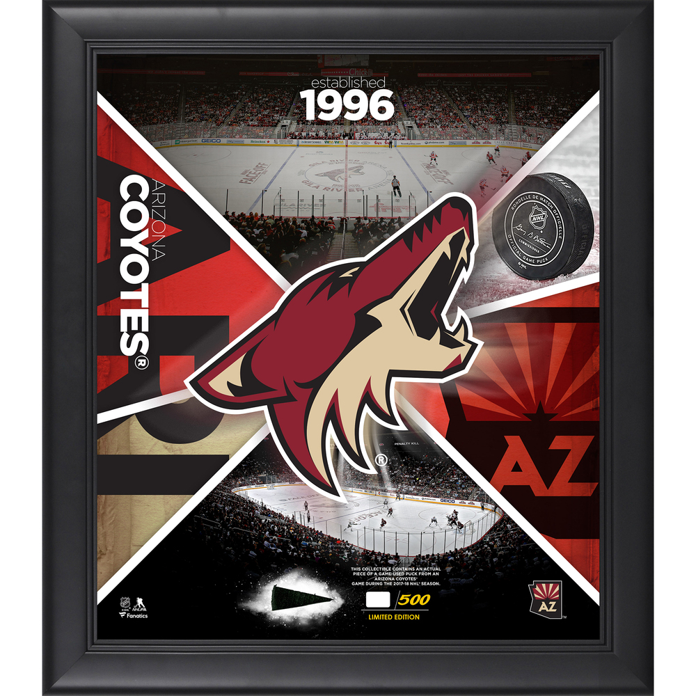 Arizona Coyotes Framed 15