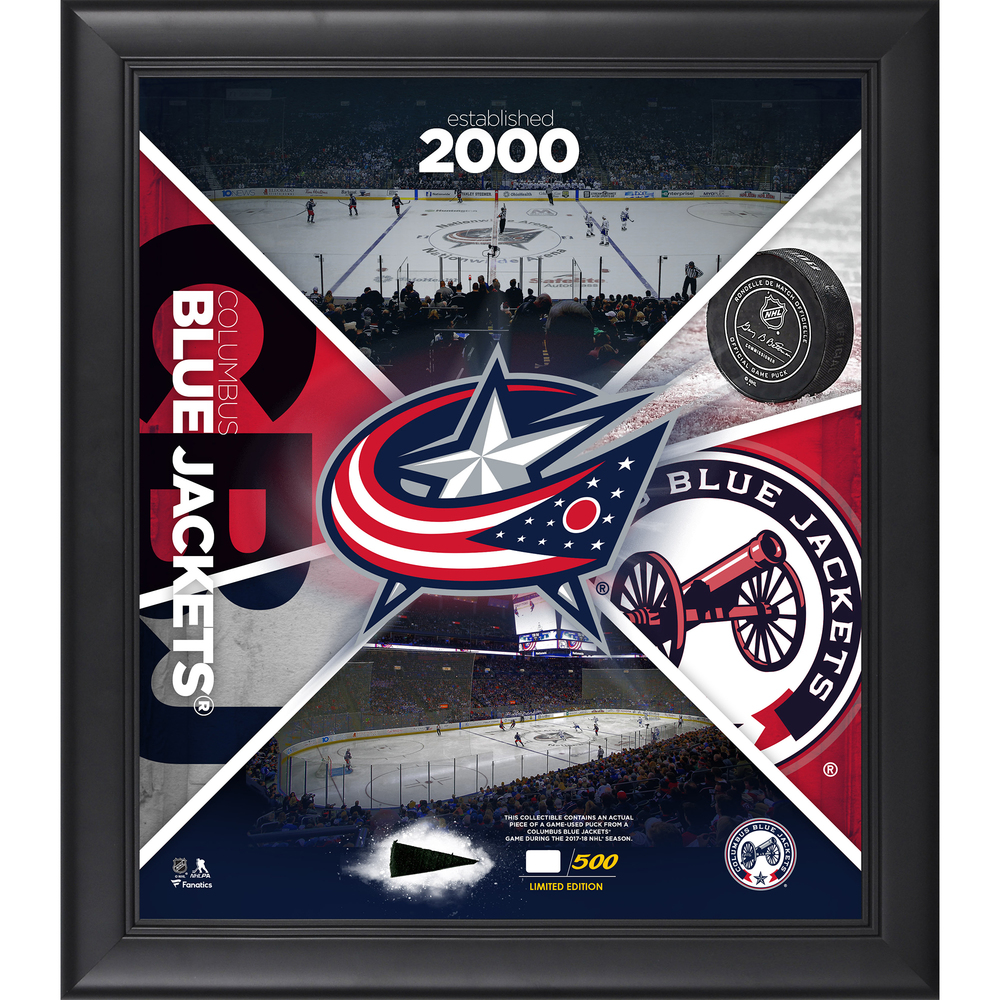 Columbus Blue Jackets Framed 15