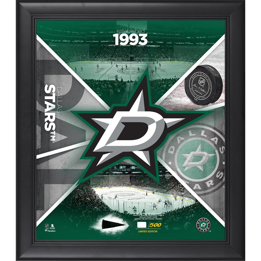 Dallas Stars Framed 15