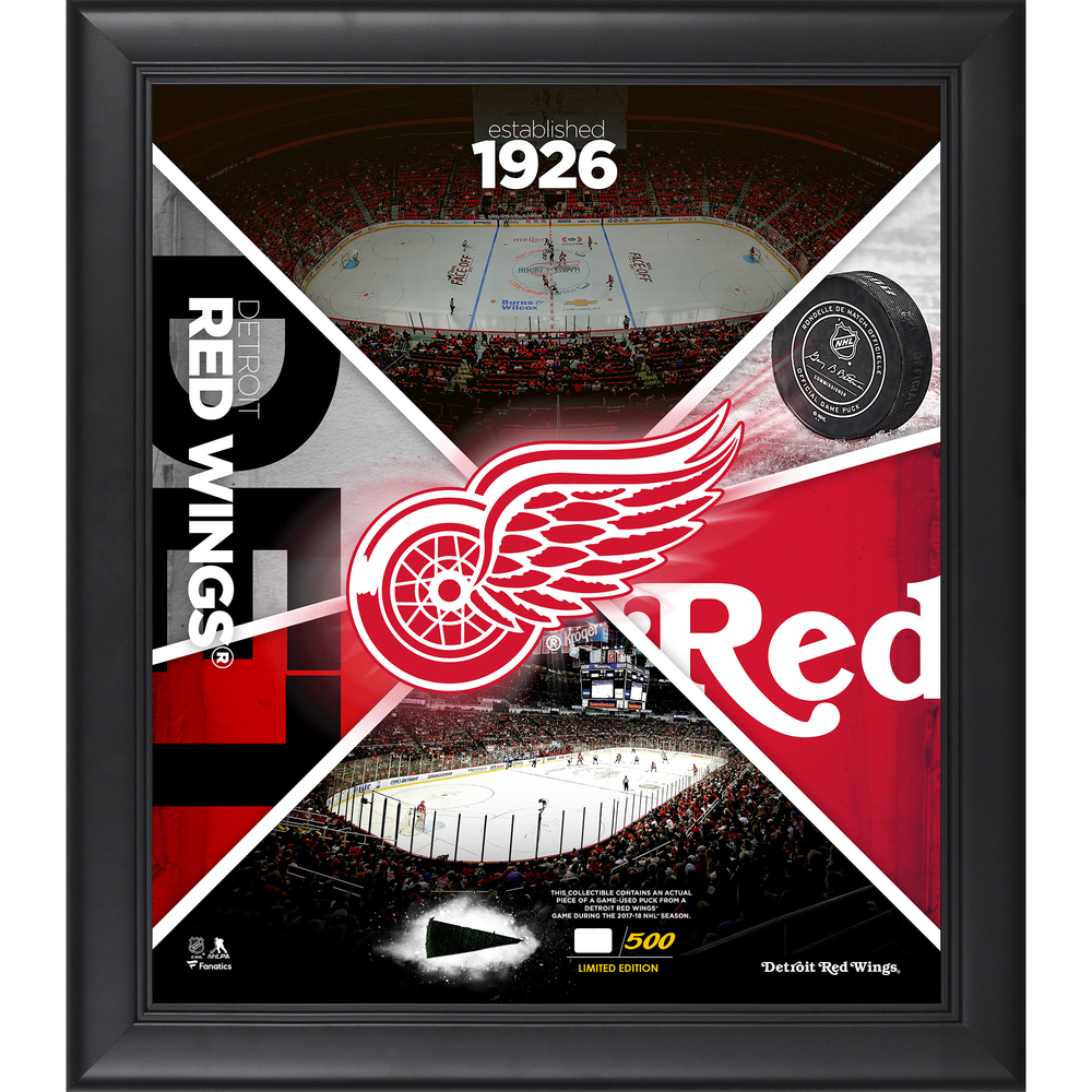 Detroit Red Wings Framed 15