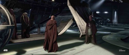 Anakin Skywalker and Mace Windu