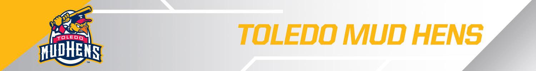 Toledo Mudhens team banner