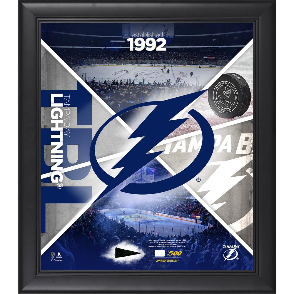 Tampa Bay Lightning Framed 15