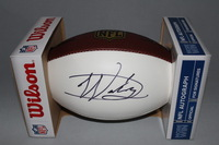 NFL - PANTHERS DARYL WORLEY SIGNED PANEL BALL