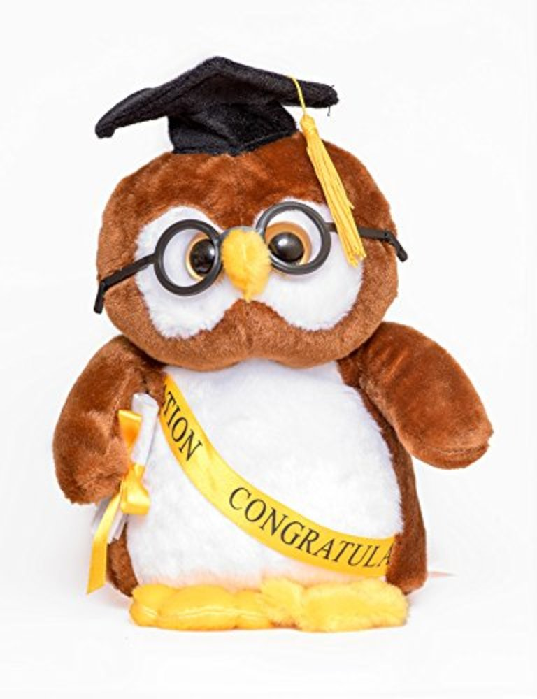 """Photo of 10"""" Brown Owl Graduation Commencement Plush with Cap and Diploma in Hand - the Perfect Present For Your Grad"""
