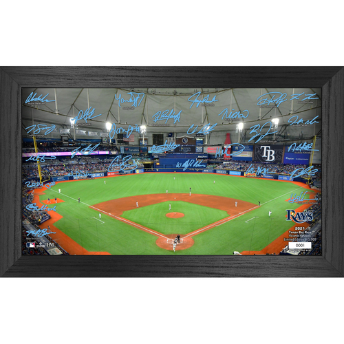 Photo of Tampa Bay Rays 2021 Signature Field Photo Frame