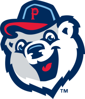 Pawtucket Red Sox Logo