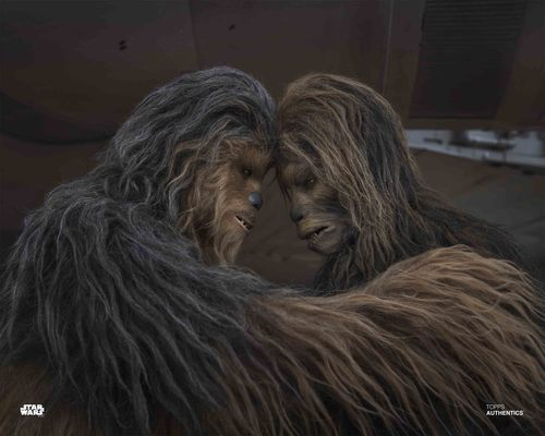 Chewbacca and Sagwa