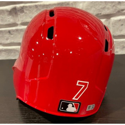 Photo of Team-Issued Helmet -- Left Ear Flap -- Size 7 1/8