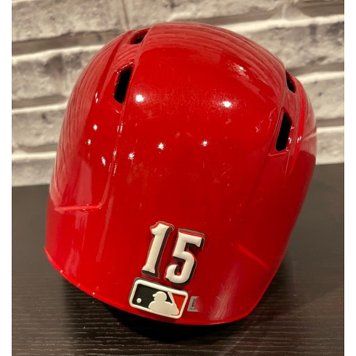 Photo of Team-Issued Helmet -- Left Ear Flap -- Size 7 1/4