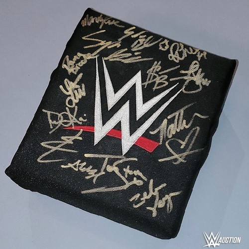 SIGNED and USED WWE Turnbuckle (WWE Evolution 10/28/2018)