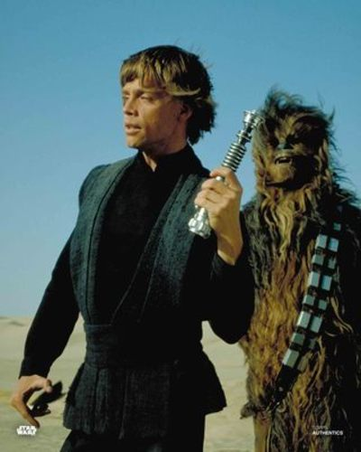 Luke Skywalker and Chewbacca