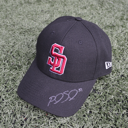 Photo of Charity Auction - Broward Education Foundation - Paul Sewald #51 - Autographed & Game-Used Marjory Stoneman Douglas High School Cap